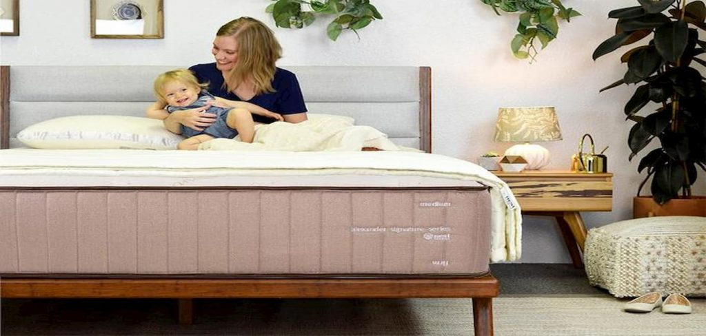 Nest Bedding Alexander Signature Memory Foam Mattress