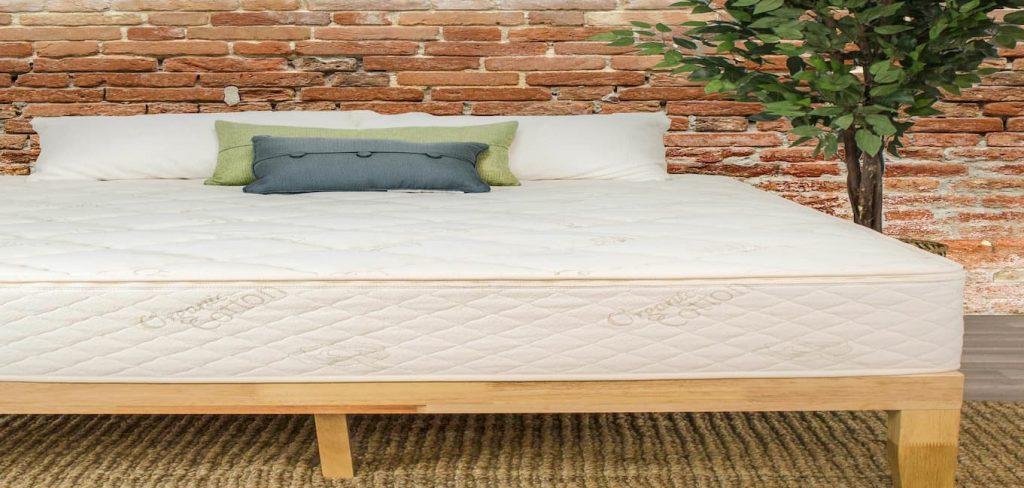 Sleep EZ Select Sleep Organic Latex Mattress