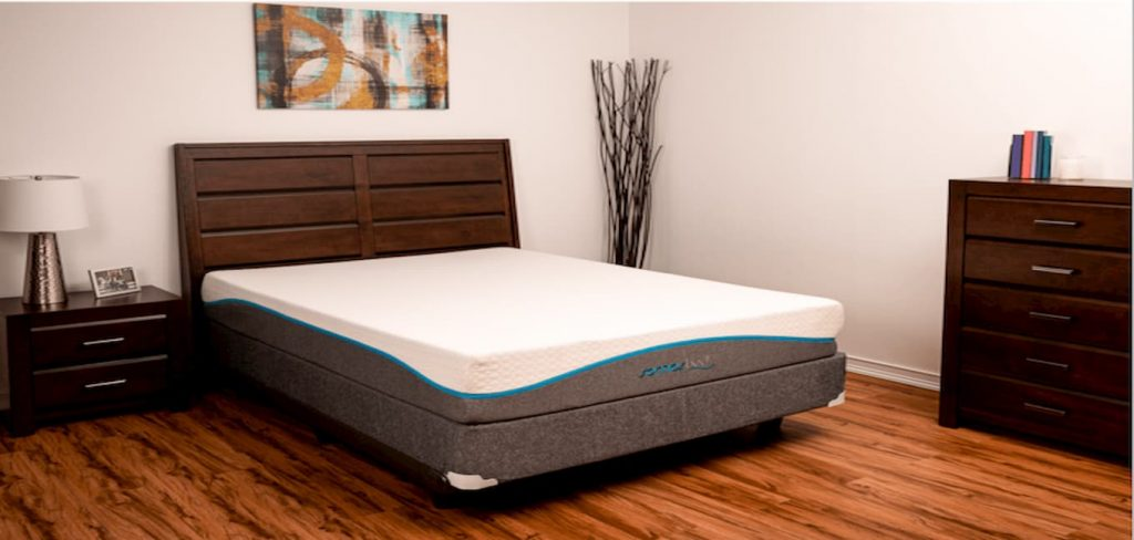 Somos Reviva Memory Foam Mattress