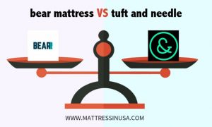 bear-mattress-vs-tuft-and-needle-image