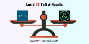 lucid-mattress-vs-tuft-and- needle-comparison-image
