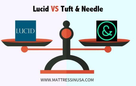 lucid-mattress-vs-tuft-and- needle-comparison-image