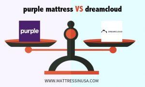 purple-mattress- vs-dreamcloud-image